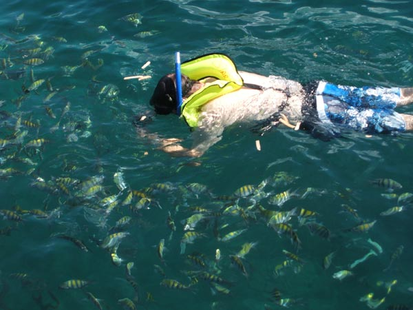 Snorkeling on the south-east coast of Grenada